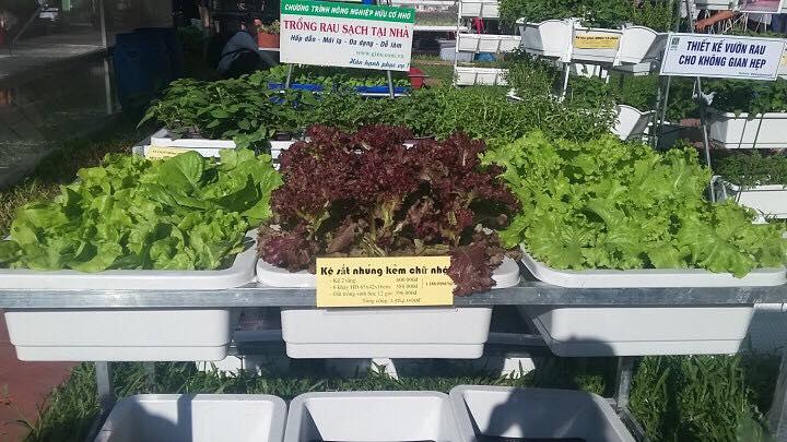 giá kệ trồng rau tphcm