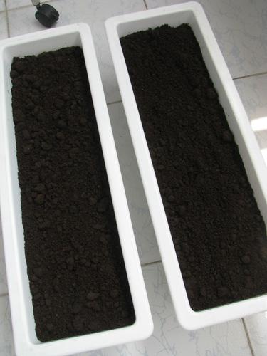 đất trồng rau sạch ở đâu tphcm