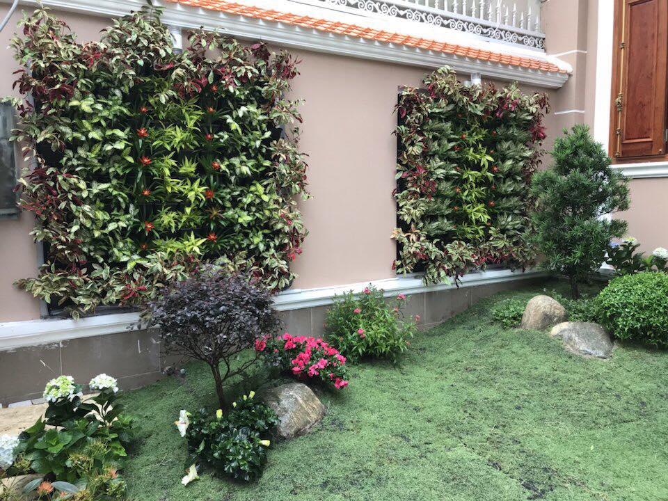thiết kế tường cây xanh đẹp