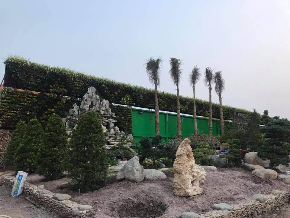 vườn tường đứng