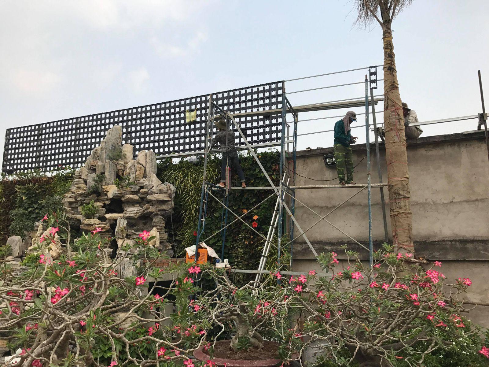 thiết kế modul vườn tường