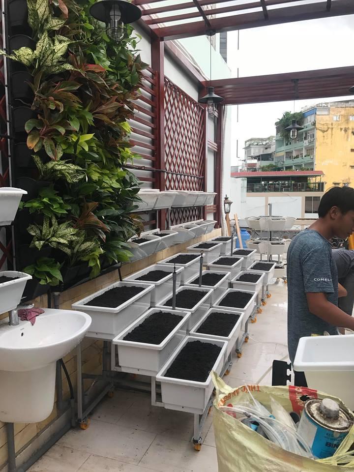 thiết kế vườn rau sạch giàn trồng rau