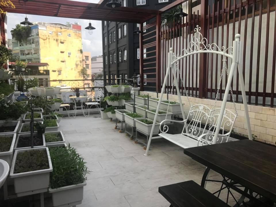mẫu thiết kế vườn rau tại nhà