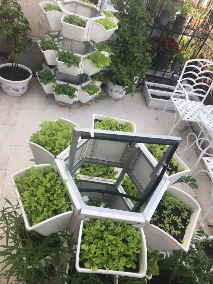 thiết kế công trình xanh