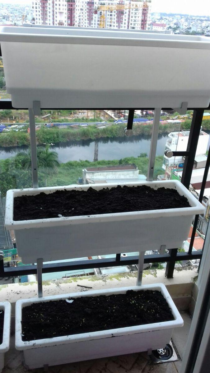 giàn trồng rau treo lang cang ban công
