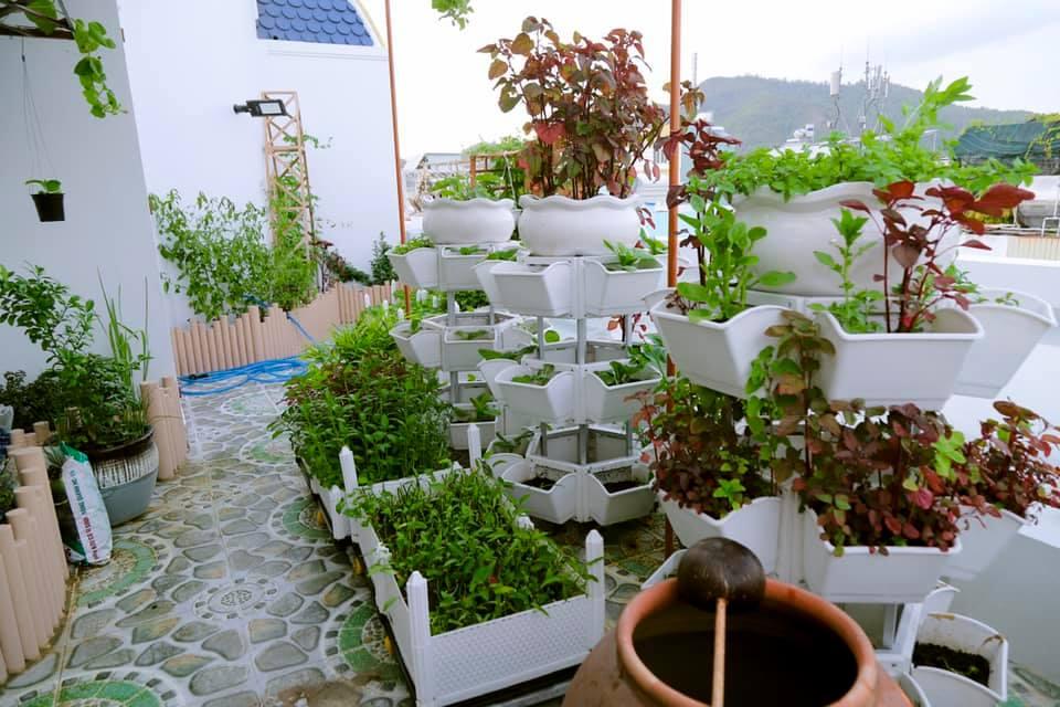 Quang Anh HCM chuyên thi công vườn rau sạch tại nhà giá rẻ, chuyên nghiệp