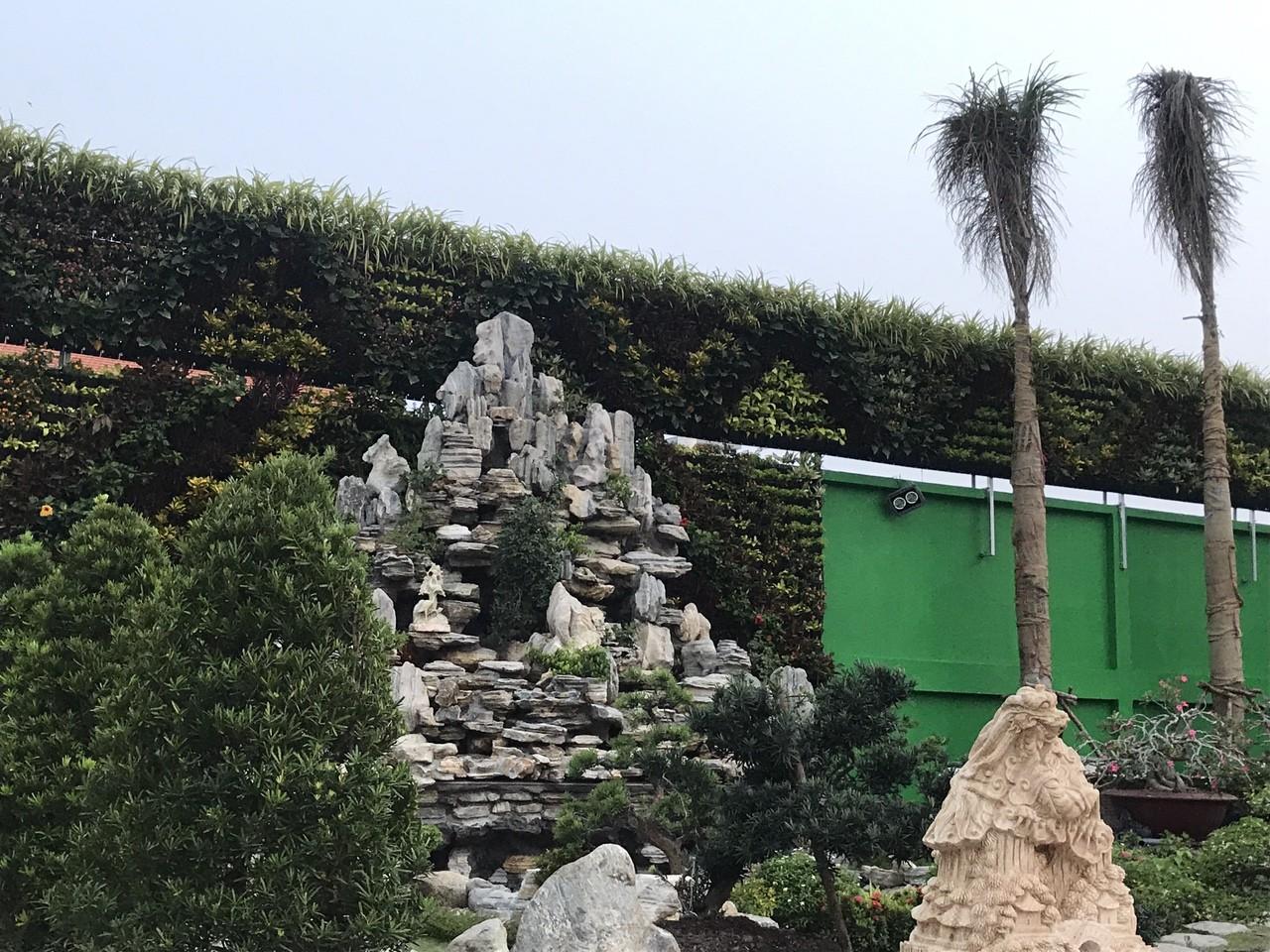 thi công vườn tường cây xanh