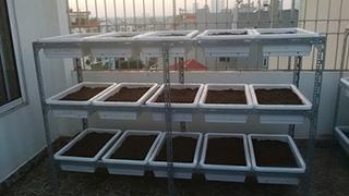 Giàn trồng rau 3 tầng.