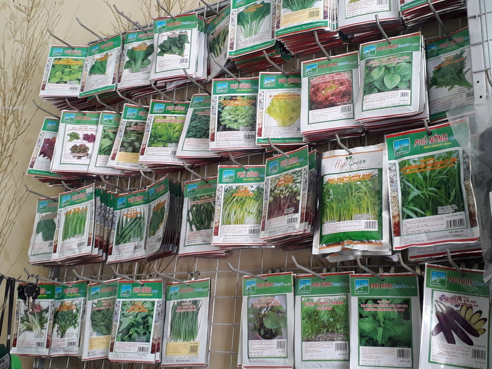 địa chỉ giúp bạn mua hạt giống rau sạch
