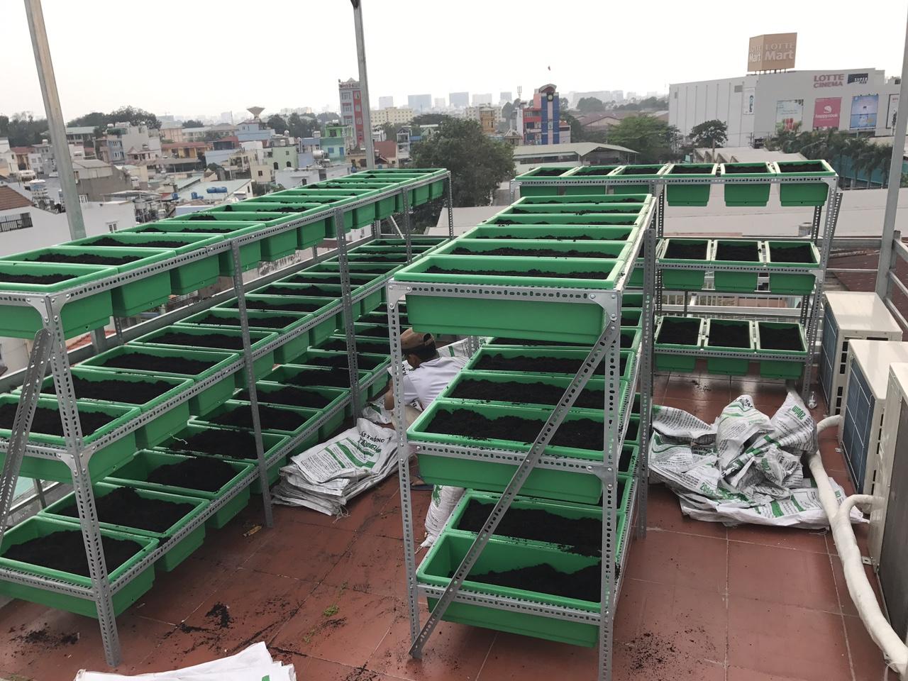 Quang Anh kệ trồng rau hcm