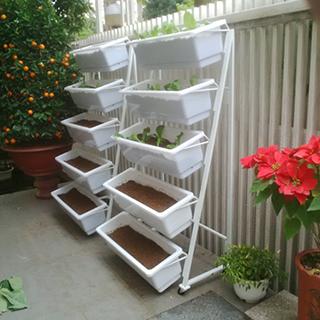 kệ trồng rau sạch hcm