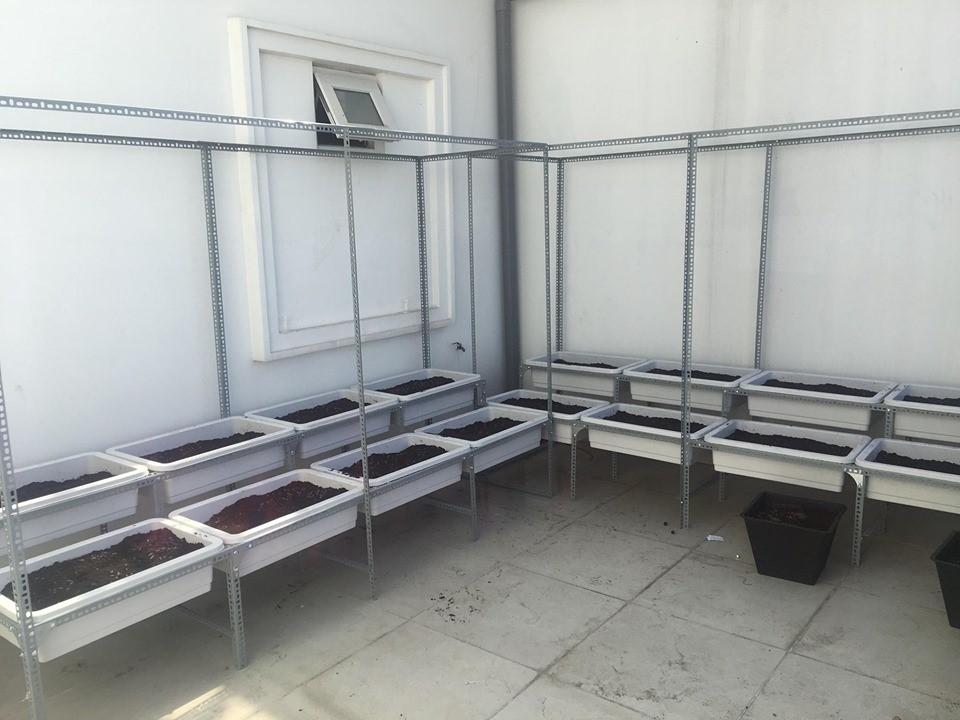 Quang Anh HCM nhận làm giàn trồng rau giá rẻ bằng sắt V lỗ theo kích thước khách đặt