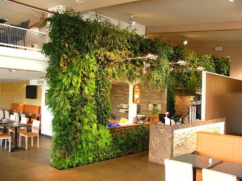 Vườn tường đứng trang trí trong nhà hàng, khách sạn, quán café