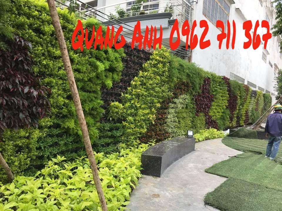 thiết kế tường xanh