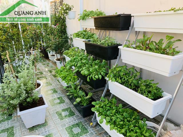 Giàn trồng rau bốn chậu bánh xe Quang Anh HCM