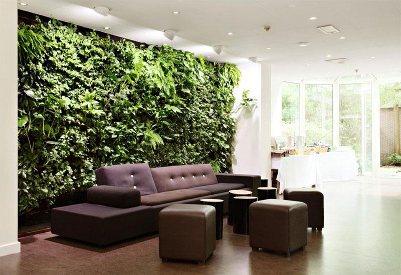 Lựa chọn ra bức tường bạn muốn làm vườn tường đứng trong ngôi nhà của bạn.