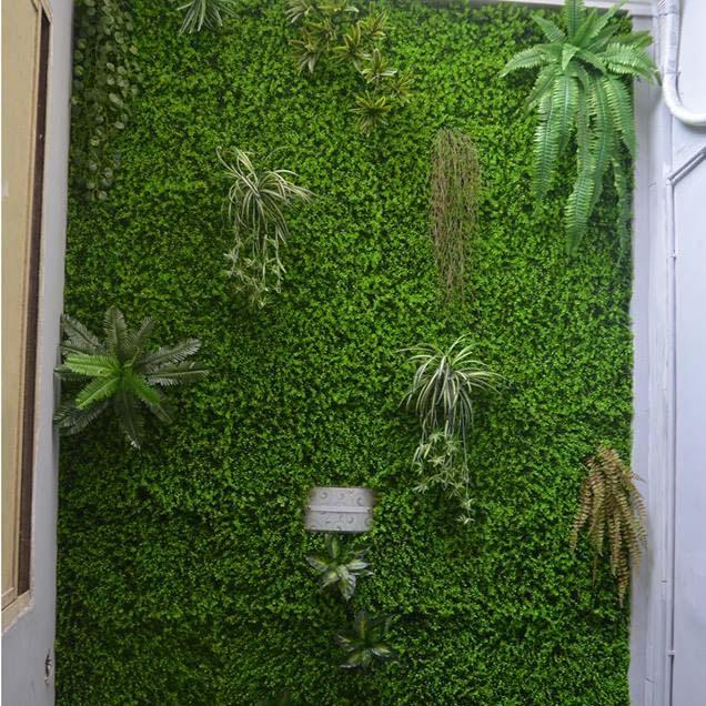 thiết kế tường cây giả hcm
