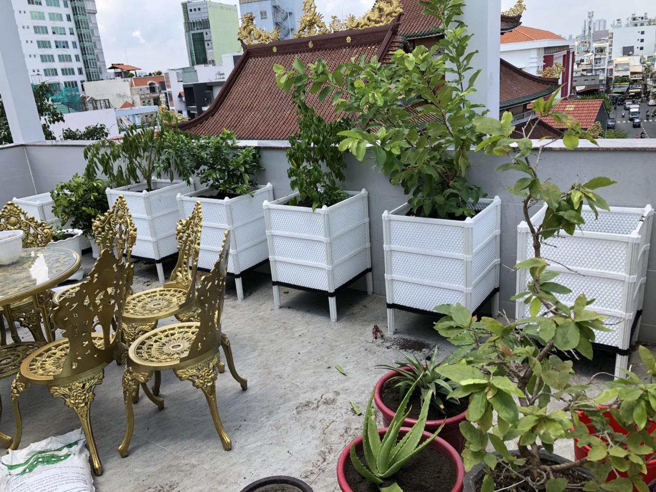 Quang Anh HCM thi công vườn rau sạch giá rẻ tại nhà bằng chậu ghép thông minh