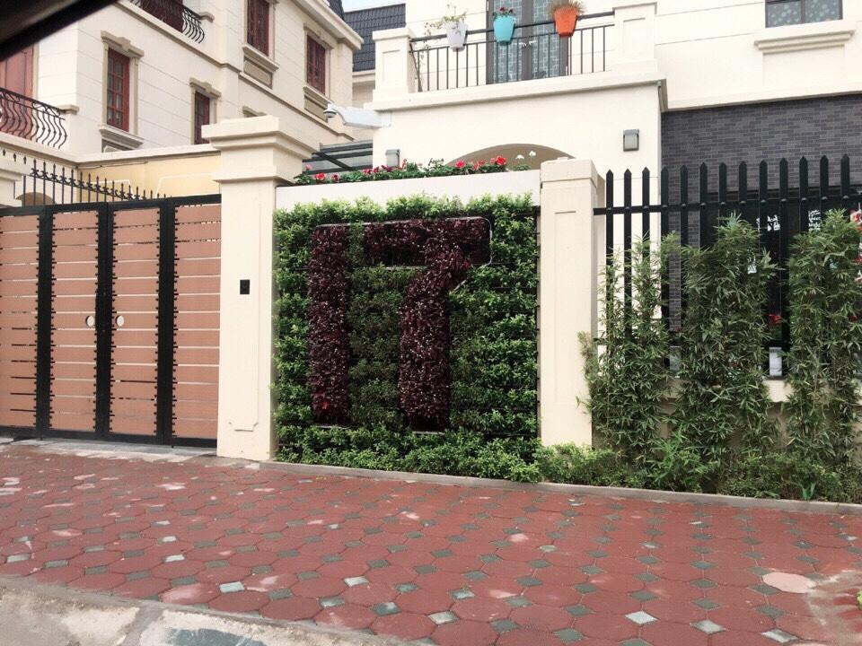 Thiết kế vườn tường xanh trong nhà đẹp nhất tại công ty Quang Anh