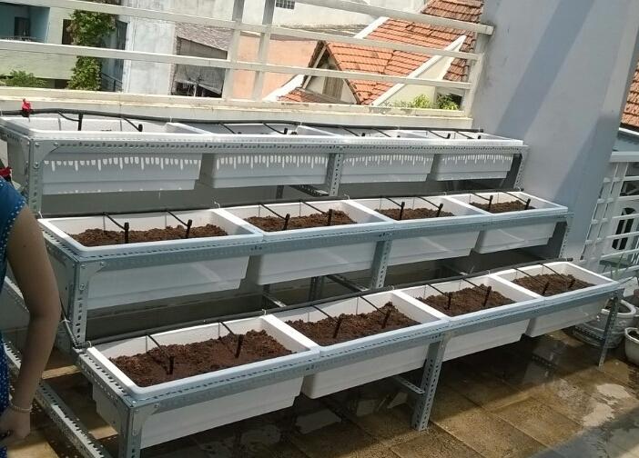 Kệ trồng rau thông minh Quang Anh-địa chỉ bán chậu trồng cây chất lượng