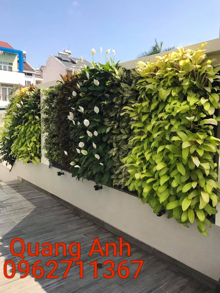 Địa chỉ thiết kế tường cây xanh uy tín và chất lượng nhất tại TP HCM