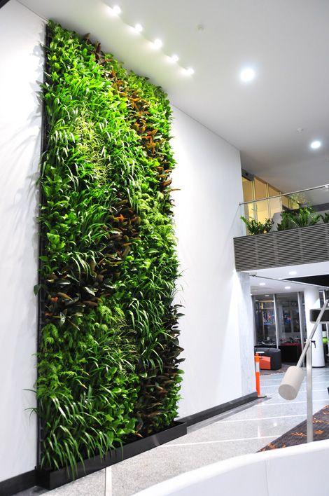 Mảng vườn tường xanh được thi công bởi Quang Anh HCM