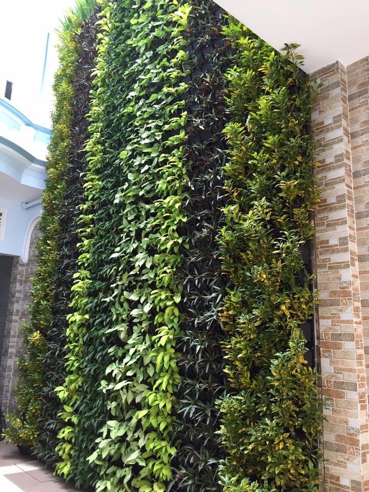 Thiết kế vườn tường xanh đẹp và sang trong nhất tại công ty Quang Anh