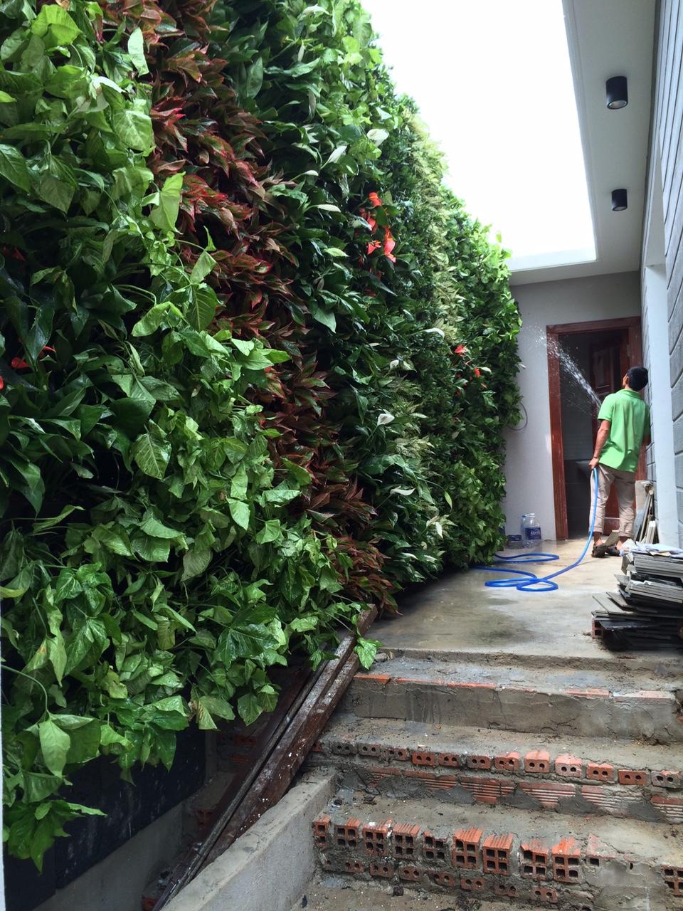 Địa chỉ thiết kế vườn tường đứng đẹp nhất tại TPHCM-Uy tín và chất lượng
