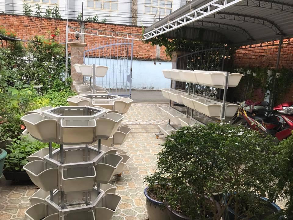 Dịch vụ trồng rau sạch tại nhà hiệu quả tại tphcm-Công ty thiết kế vườn tại nhà Quang Anh
