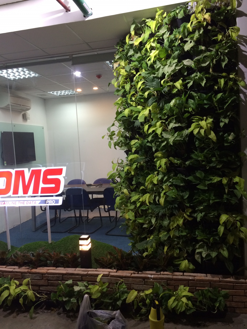 Ưu điểm khi thiết kế tường cây xanh trong nhà cùng công ty Quang Anh