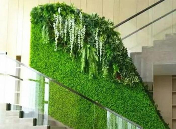 Thiết kế vườn tường giả ở quận Nhất và các quận khác ở HCM.