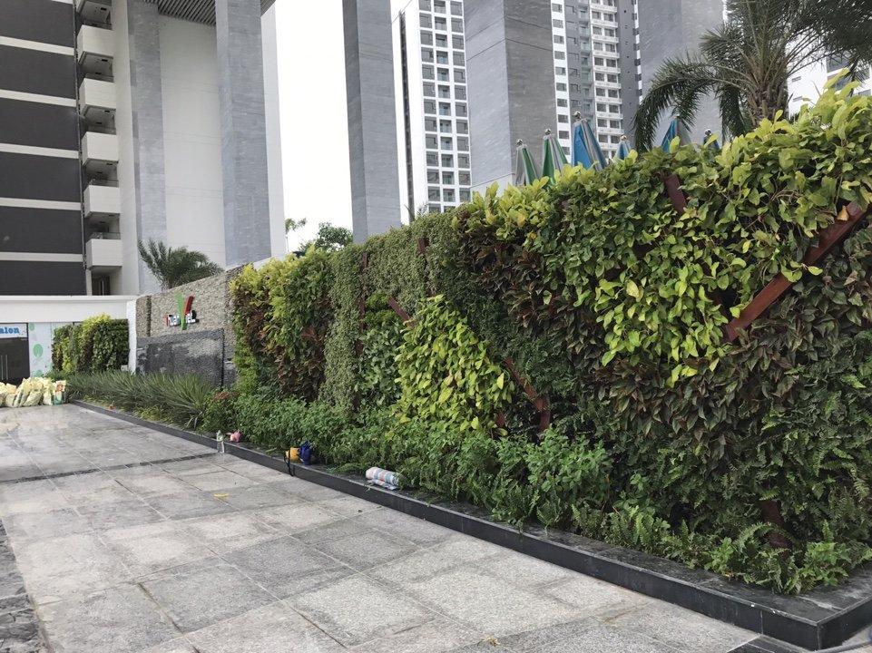 Thiết kế tường đứng đẹp và uy tín nhất hiện nay-Công ty Quang Anh