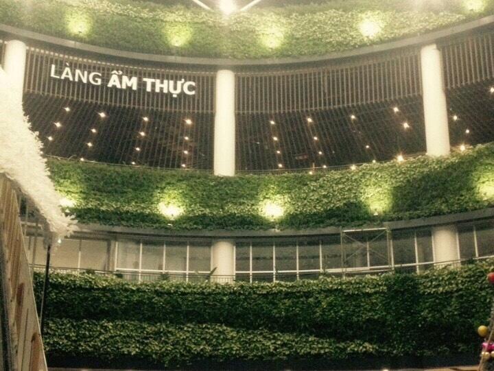 Thiết kế mô hình trồng cây trên tường đứng trong nhà đẹp nhất