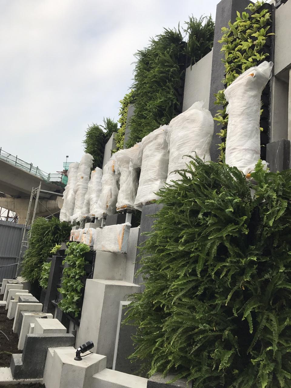 Thiết kế vườn tường đứng theo phong cách 3 T(Xanh-Sạch -Đẹp) uy tín với giá hợp lý nhất