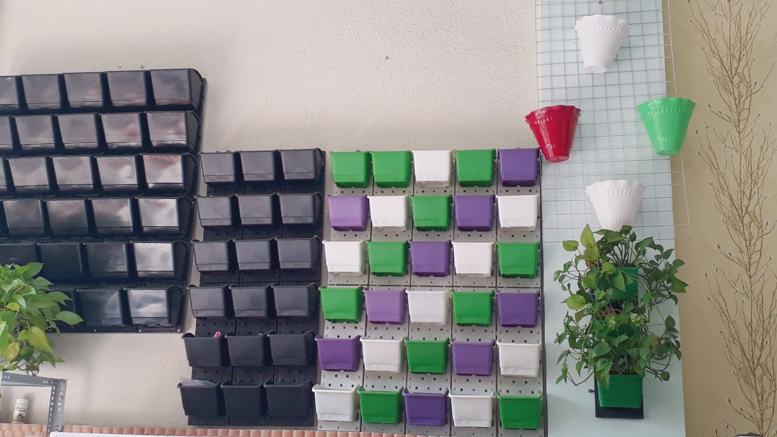 Nơi bán modul vườn tường đứng rẻ nhất miền Nam - Quang Anh HCM