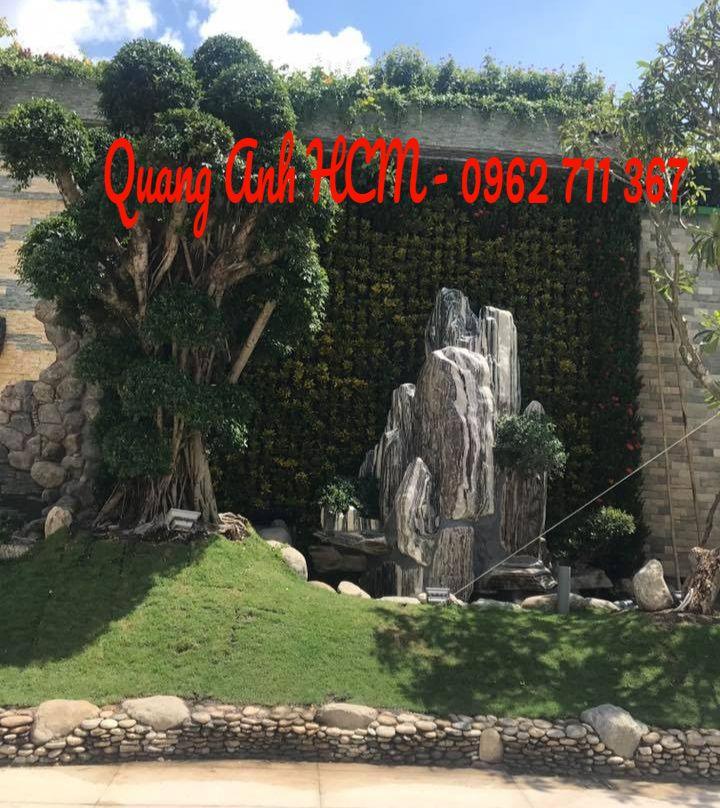 Modul vườn tường đứng mang thiên nhiên đến gần bạn