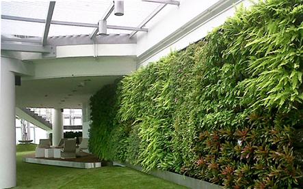 Làm đẹp nhà nhanh chóng với bức tường xanh tại Thảo Điền - Công ty Quang Anh HCM thi công thực hiện