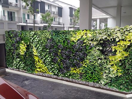 Thi công bức tường xanh