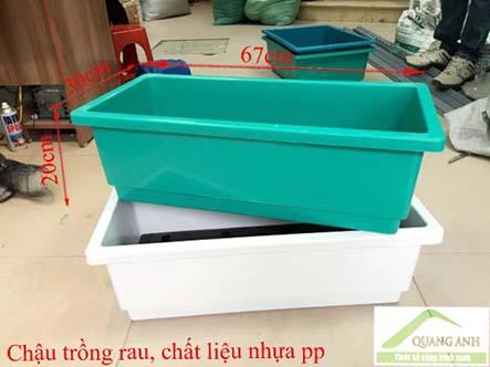 Bán khay nhựa trồng rau thông minh tại TPHCM-Công ty Quang Anh