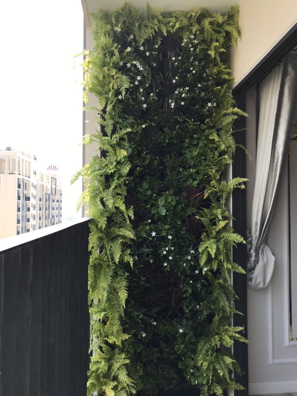 Công trình thi công vườn tường xanh cuối năm