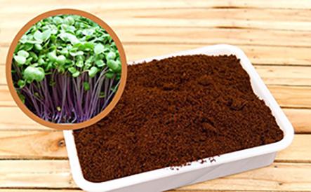 Cách làm đất trồng rau sạch trong thùng sốp và cải tạo đất hiệu quả nhất