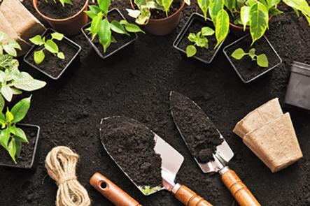 Bán dụng cụ trồng rau sạch tại nhà tphcm giá rẻ và chất lượng