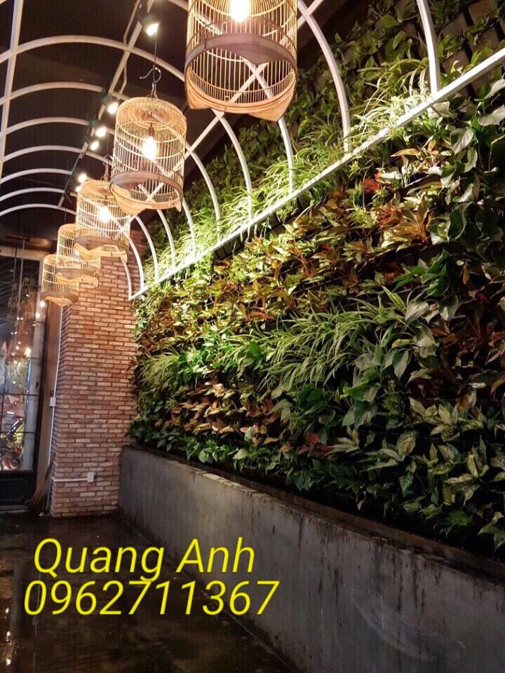 Thiết kế cây trồng trong nhà tại TP HCM đẹp và mang đến tài lộc cho gia đình bạn