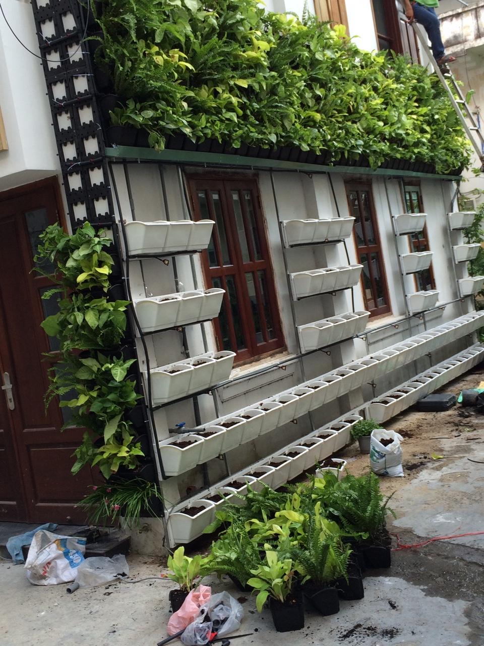 Vườn thẳng đứng-Xu hướng thiết kế nhà đẹp dẫn đầu hiện nay