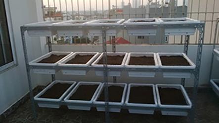 Giàn trồng rau 3 tầng 15 chậu