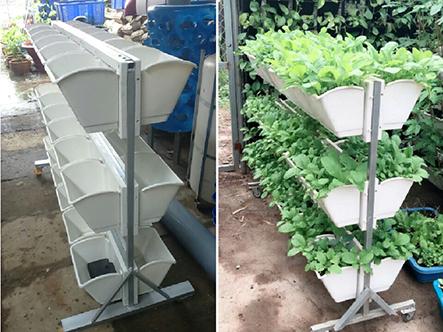 Địa chỉ bán giàn trồng rau sạch tại nhà giá rẻ tại tphcm