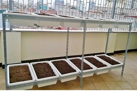 Giàn trồng rau 2 tầng 12 chậu
