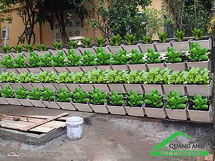 Thiết kế vườn rau trên sân thượng đẹp và hiệu quả-chuyên gia Quang Anh