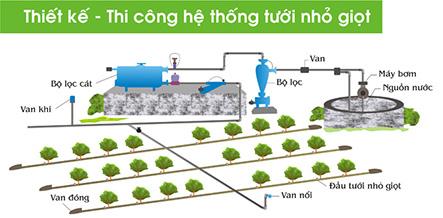 Hướng dẫn về hệ thống tưới nhỏ giọt thông minh giúp phân phối nước hiệu quả