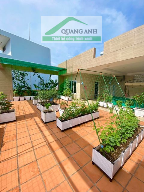 Thi công vườn rau sạch trên sân thượng đẹp mê ly tại Quận 5!